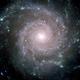 Avi galaxy