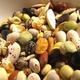 Avi seeds