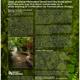 Elphinstonepermacultureweb