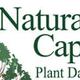 3%22 ncpdb logo