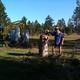 Side yard stumps