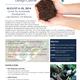 Permaculture design course 2014 april25update