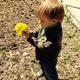 Will flower