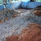 Compost%20080311cocofibre%20007