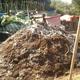 Compost turn 20150703