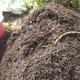 Compost turn 20150718 close