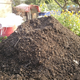 Compost_turn_20150725