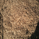 Compost turn 20150730 close
