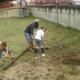 Laltrascuola garden soilconditioning