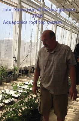 Photo of John Stevenson - Aquaponics greenhouse project - 2016 Hybrid System fertilized by fish waste – Posted to Permaculture Global