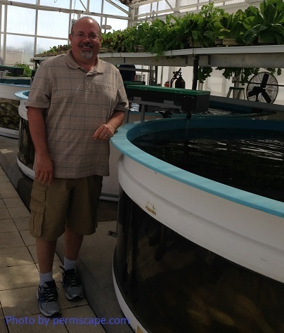 Photo of John Stevenson - Aquaponics greenhouse project - 2016 – High Density Tilapia Production Tank – Posted to Permaculture Global