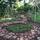 Buccleauch Park Permaculture Garden (R.I.P.E.)