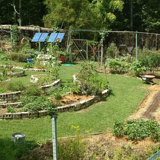 The Farm Ecovillage Training Center