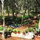 Garden of Eden Healing Community