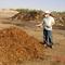 Saudi Farms