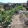 Steppe One Farm Northern Nevada USA