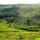 Open World Villages (Open World Foundation)