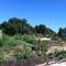 Common Kettle Farm