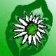 Cornflower Response (Ireland) the Utilisation and conservation of native species