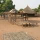 Senegal Permaculture Project in Sare Suma