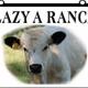 Lazy A Ranch Development