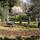 San Anselmo Community Garden