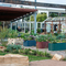 Randwick Sustainability Hub