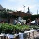 Orchard and Vine Community Garden