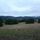 Le Petit Canard Farm