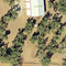 3/4 Acre Food Forest in North Texas