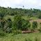 Ndanifor Permaculture Eco-Village