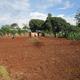Bulidac Primary School, Uganda