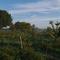 Food Forest Ketelbroek
