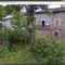permaculture in Massimino