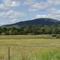 Millen Farm