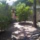 Permie Garden