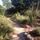 Folsom Sanctuary