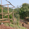 Sahainan Permaculture Organic Farm