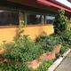 Fernwood Kitchen Garden