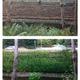 Soil Bio-Engineering & Slope Stabilization