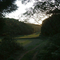 Guibi Zakko Forest Garden