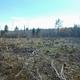 Fournier Food Forest