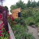 Fargo Forest Garden