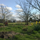 Breadlands Westbere Permaculture
