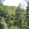 Jumba Wumba Valley Farm