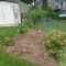 Pepper Family Yard Conversion
