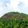 Prakreetheeyam in Kerala Lush South India!