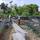 Aloha Ranch and Organic Farm