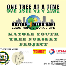 Kayole Tree Nursery Project