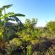 La Loma Viva Permaculture Centre, Spain